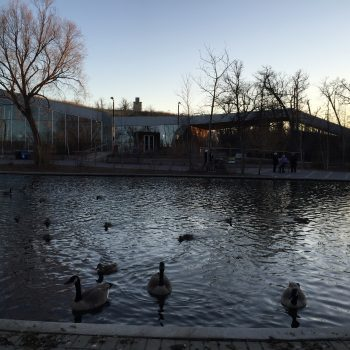 The Assiniboine Park Duck Pond at Dusk