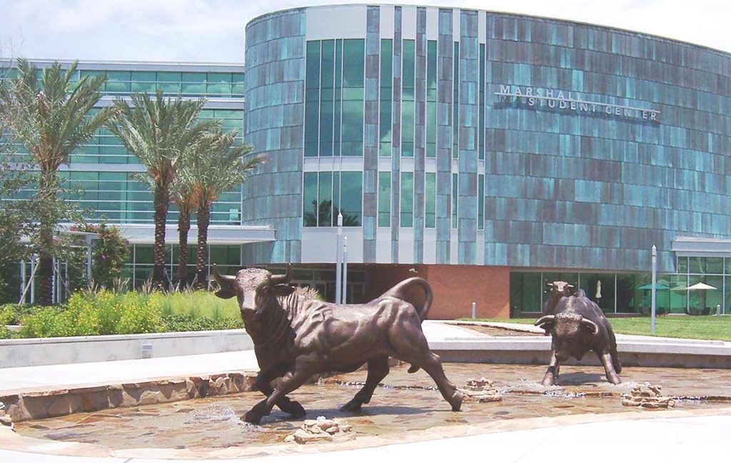 USF-University-of-South-Florida-Bulls-PHD