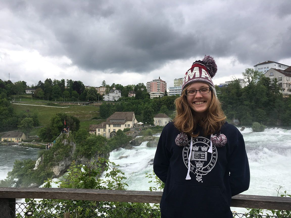 rhine falls swiss waterfall