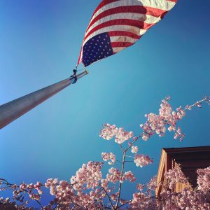 Cherry blossoms and an American flag, which Leesa now sees after living abroad.