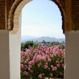 Looking out from the Alhambra