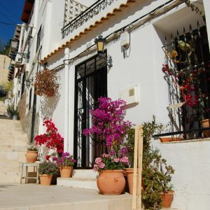 Vivid colors and contrast in Alicante