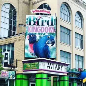 A photo of Bird Kingdom, an aviary.