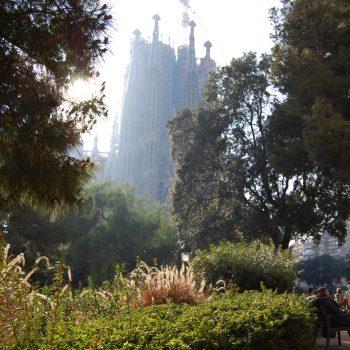 Looking up at La Sagrada Familia in Barcelona