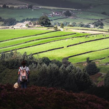 The moors where the Bronte sisters lived in Yorkshire.