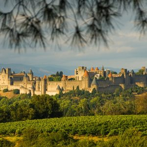 Carcassonne from far away