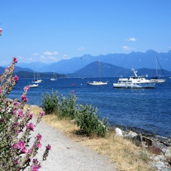 Looking out on the harbour in Gibsons