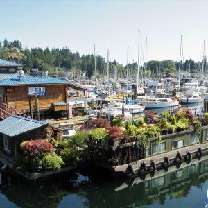 Looking out on the Gibsons marina