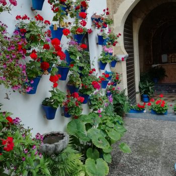 Calleja con flores Córdoba España