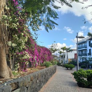 A streetscape Amanda found after moving to Tenerife