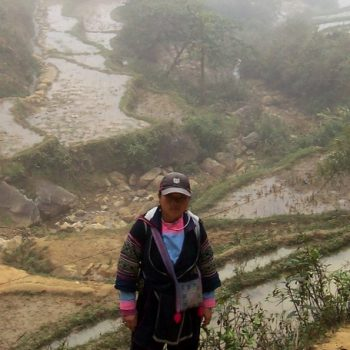Lam in front of the mountain