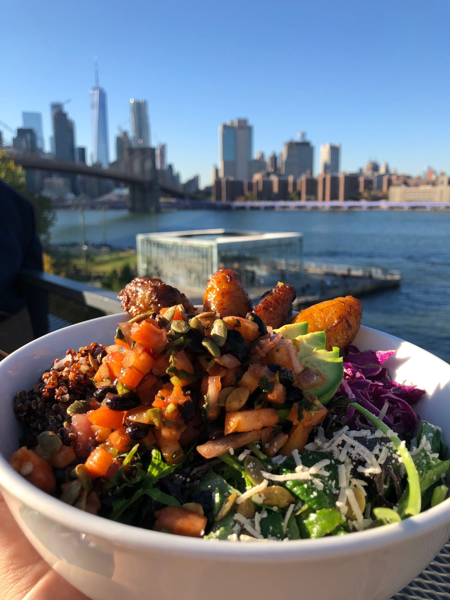 A vegan bowl in NYC