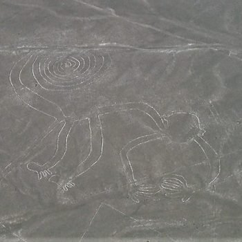 The Nazca's monkey from the sky, one of the top things to do in Peru before leaving.
