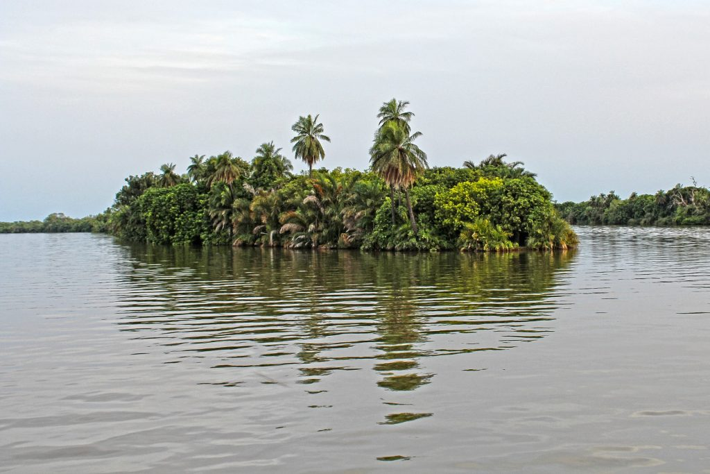 A floating island in the Gambia in West Africa.