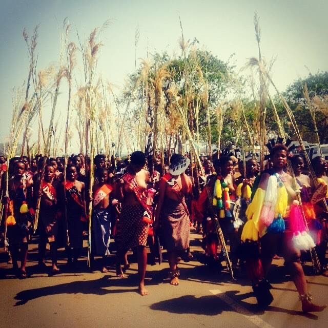 Umhlanga, the Reed Dance, a National Ceremony that Rachel observed during her time with the Peace Corps