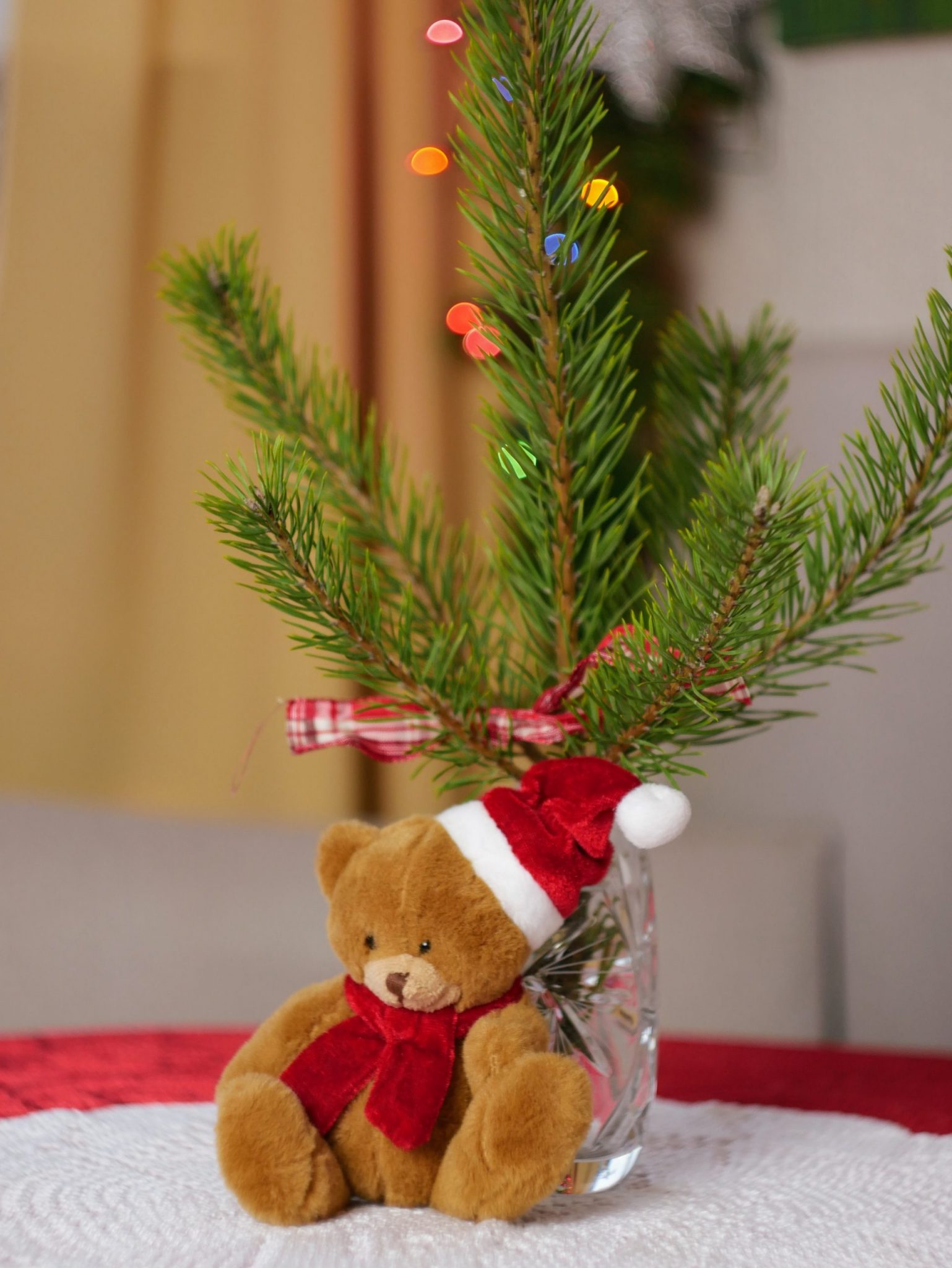 A teddy bear in front of a Christmas Tree branch