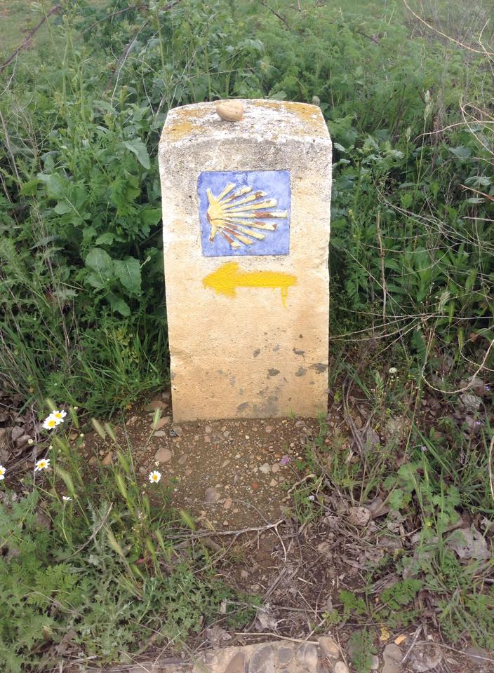 A Camino de Santiago trail marker.