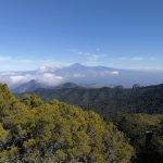 Garajonay National Park in La Gomera