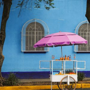 A street cart in Mexico City