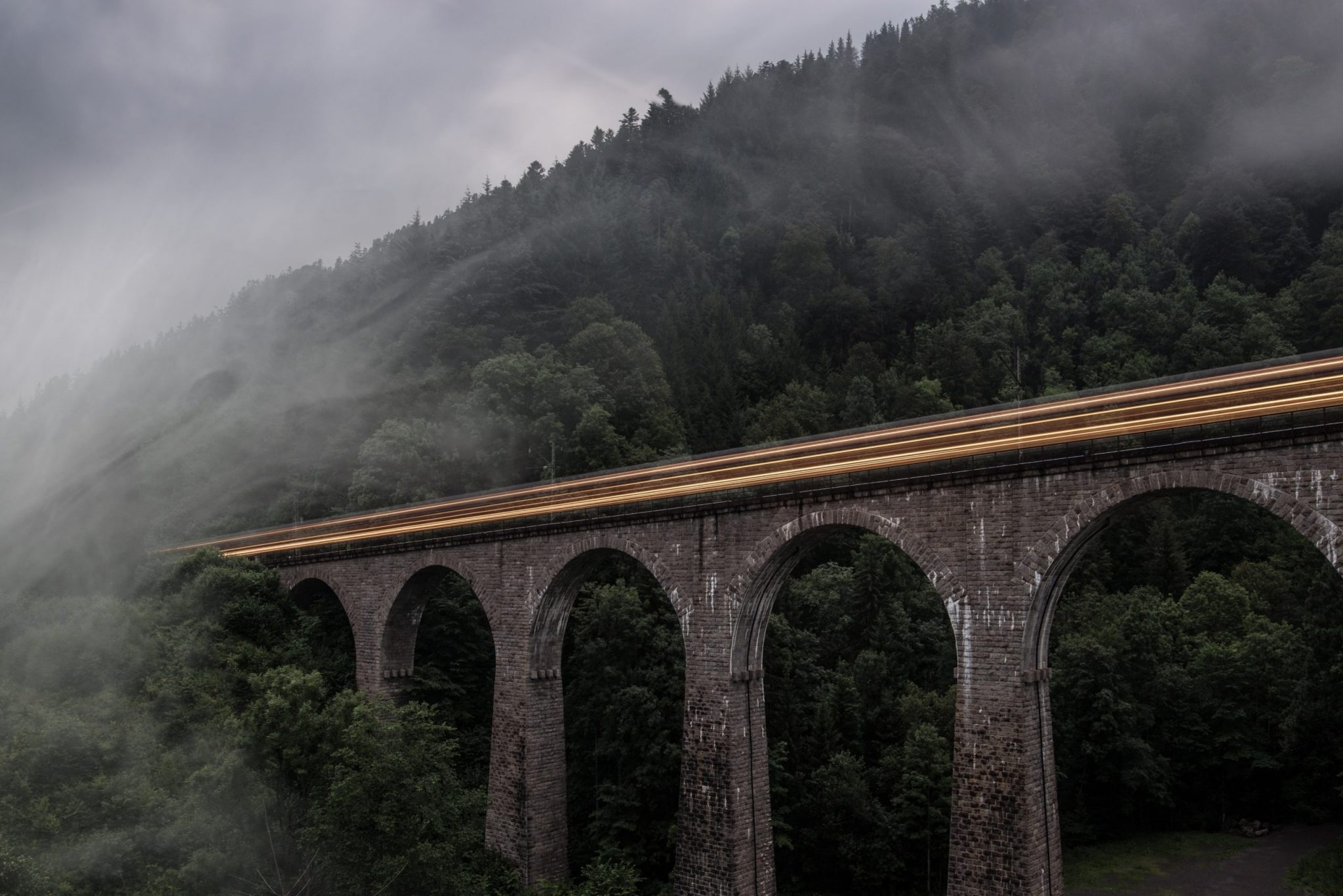 A misty bridge in the middle of the Black Forest.