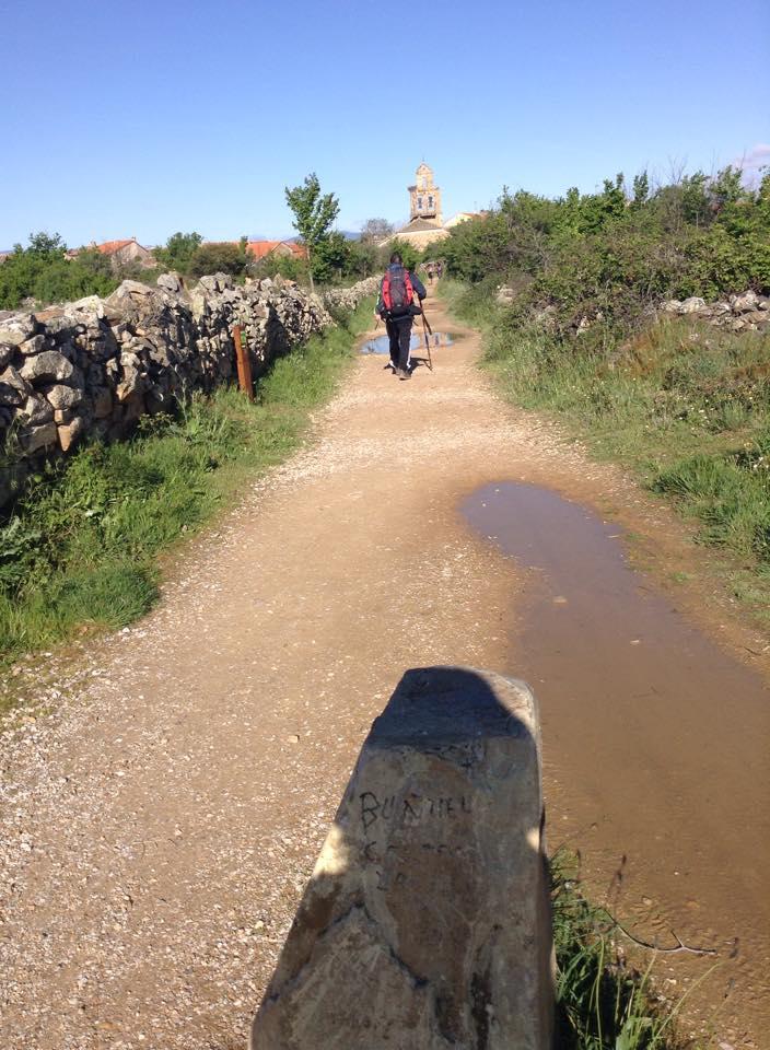 A pedestrian path of the Camino de Santiago
