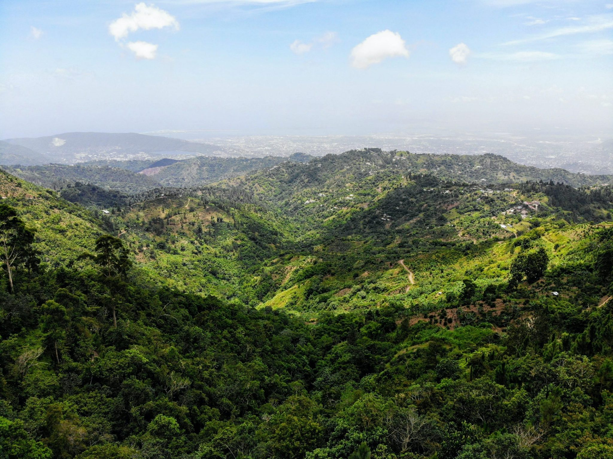 A photo of Jamaican mountains